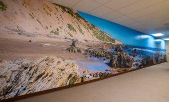 Wall Mural Prints