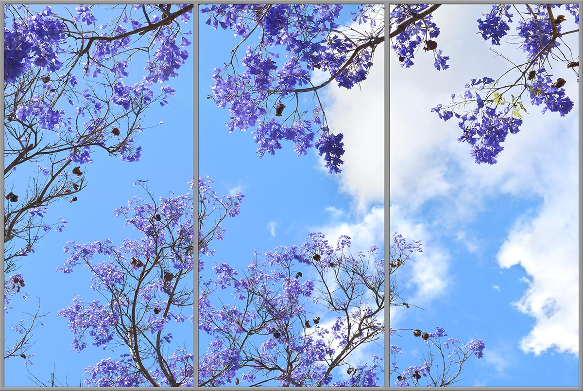 sky ceiling with purple trees fluorescent light covers 3 panel layout