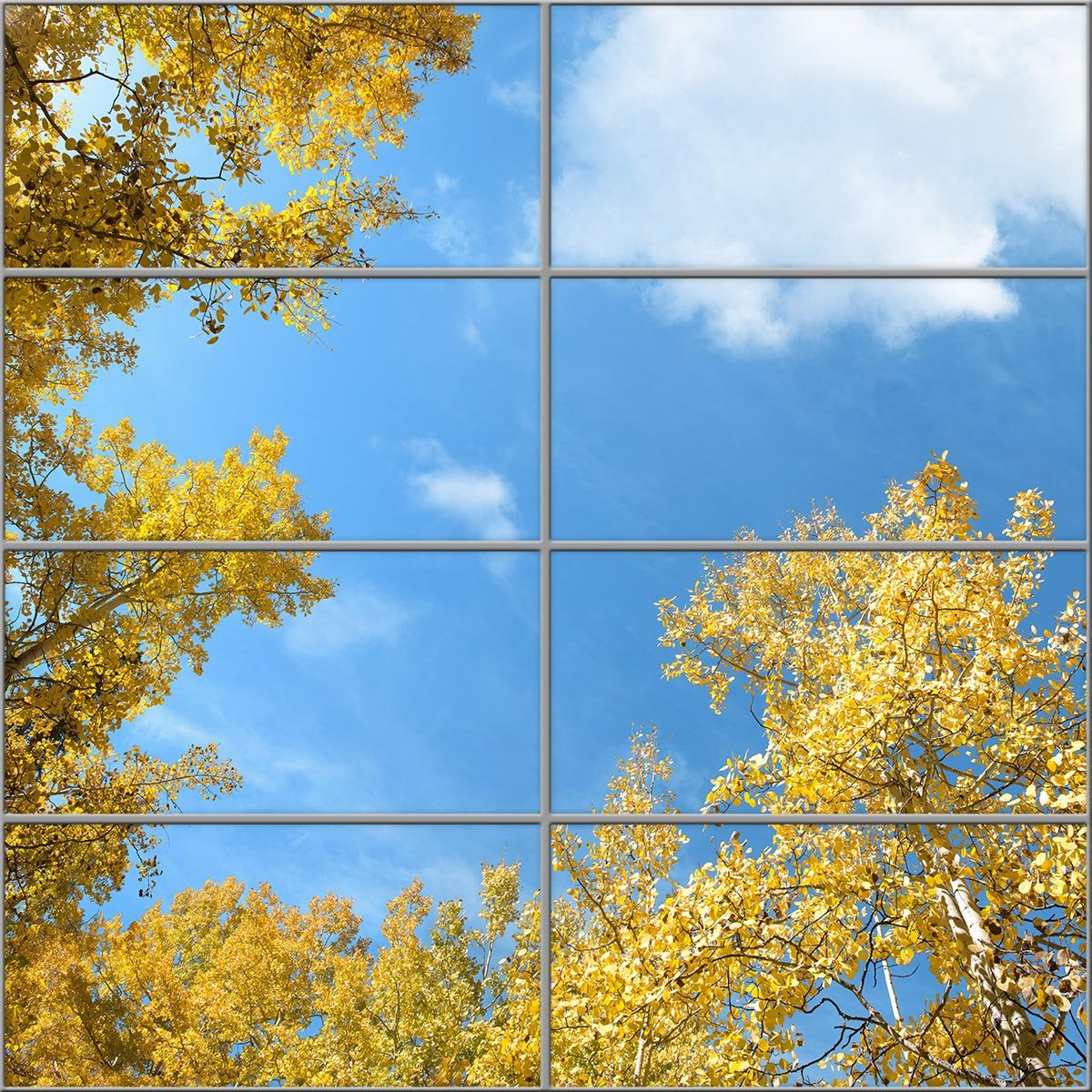 aspen sky ceiling with trees fluorescent light covers